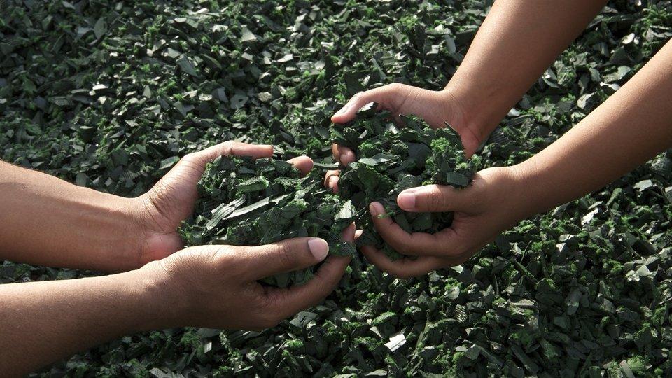 O que é e quais as diferenças de uma embalagem biodegradável, ecológica e sustentável